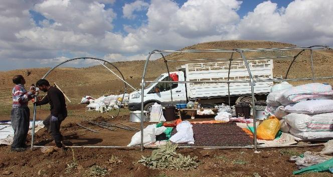 Erzincanlı göçerler dönüş yolunda
