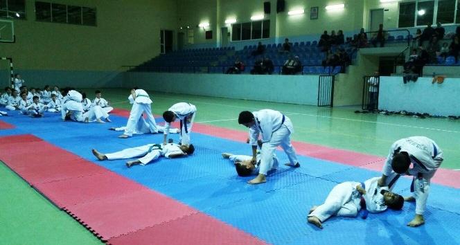 Kırkağaç'ta Taekwondo coşkusu