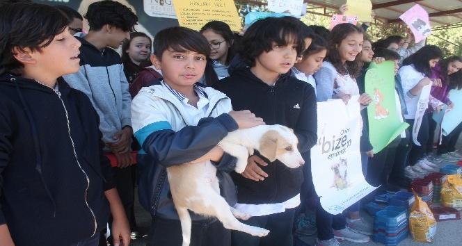 Öğrenciler, hayvan barınağını gezdi