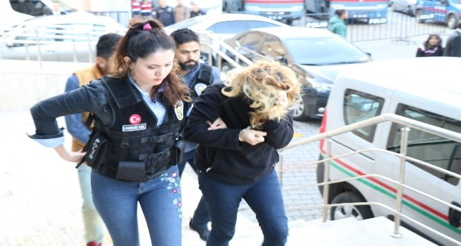 Zonguldak'ta bonzai operasyonu; 2 gözaltı