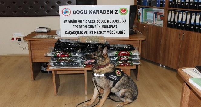 Trabzon Havalimanı'nda piyasa değeri 307 bin TL olan 15 kilo 371 gram esrar ele geçirildi