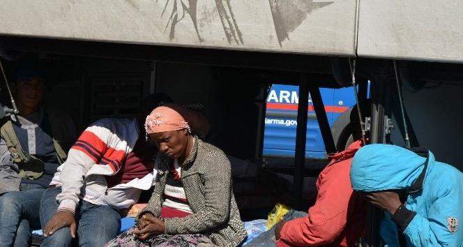 Otobüsten 181 göçmen çıktı