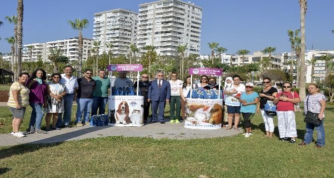 Mersin'de Hayvanları Koruma Günü'nde kedi ve köpeklere mama dağıtıldı