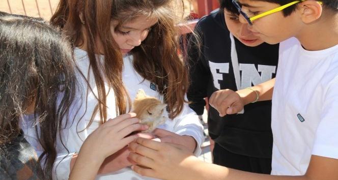 Elazığ'da, Dünya Hayvanları Koruma Günü etkinlikleri