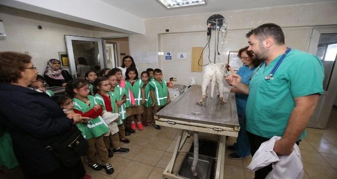 Dünya Hayvanları Koruma Günü öğrencilerle kutlandı