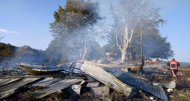 Yaylada çıkan yangında ahşap ev kül oldu