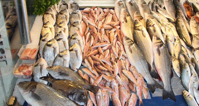 İspanya'da Türk balığına yoğun ilgi