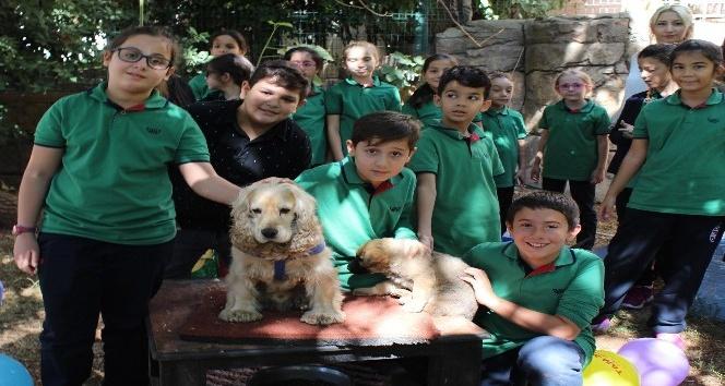 Küçük öğrencilerin büyük hayvan sevgisi