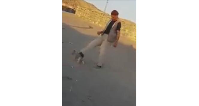 Yavru köpeğe tekme atan adam sosyal medyayı ayağa kaldırdı
