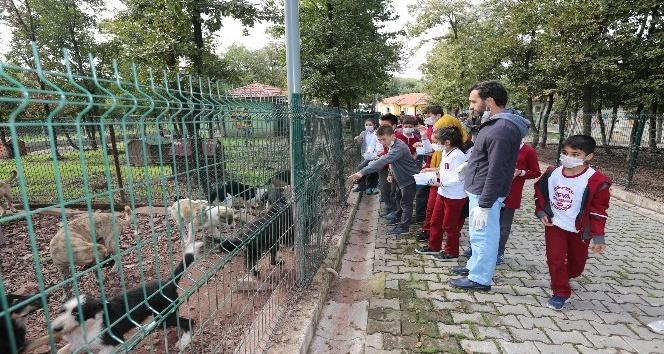 Minik öğrencilerden Sokak Hayvanları Geçici Bakımevi'ne ziyaret