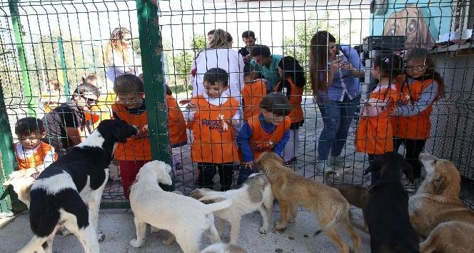 Hayvanları Koruma Gününde miniklere özel etkinlikler