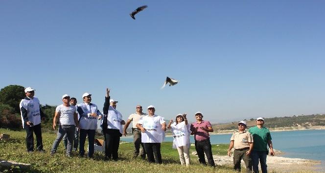 Mersin'de tedavileri tamamlanan 26 yaban hayvanı doğaya bırakıldı