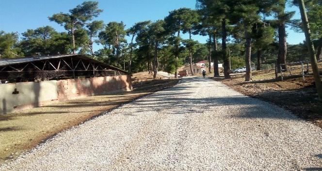 Büyükşehir mahallelerde asfalt çalışmalarına devam ediyor