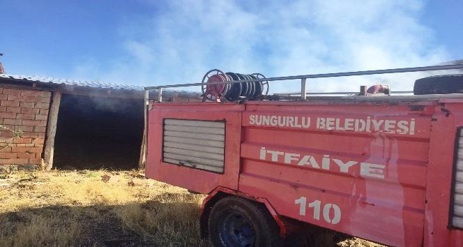 Sungurlu'da mandıra yangını