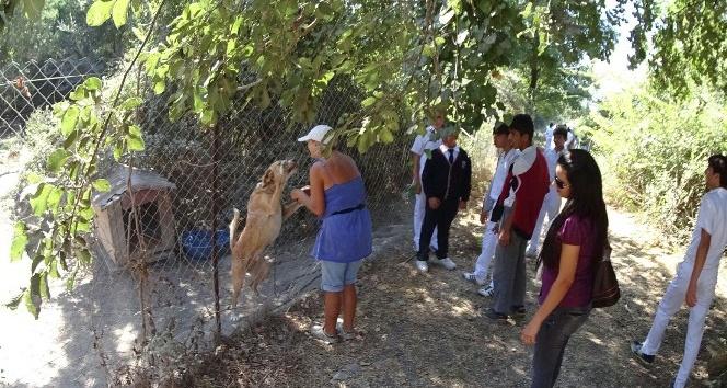 Köyceğizli öğrenciler hayvan barınağını ziyaret etti