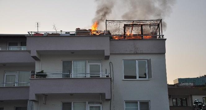 Bursa'da çıkan yangında 50 bin liralık güvercin telef oldu