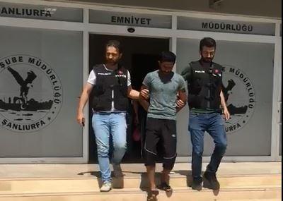 Şanlıurfa'da hırsızlıktan araması bulunanlara yönelik operasyon: 12 gözaltı