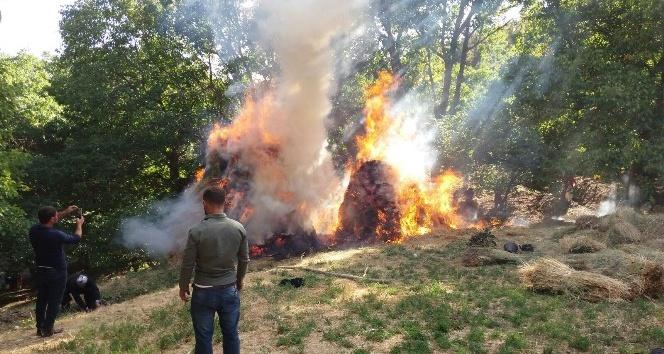 Şemdinli'de bin bağ ot yandı