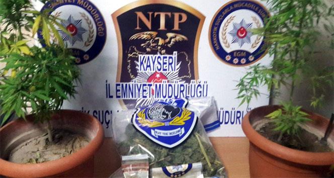Kayseri'de uyuşturucu operasyonu !