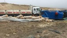 Kaza soruşturması yapan jandarma aracına kamyon çarptı