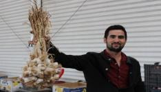 Kırşehir semt pazarının en pahalı sebzesi rekor fiyatla sarımsak oldu