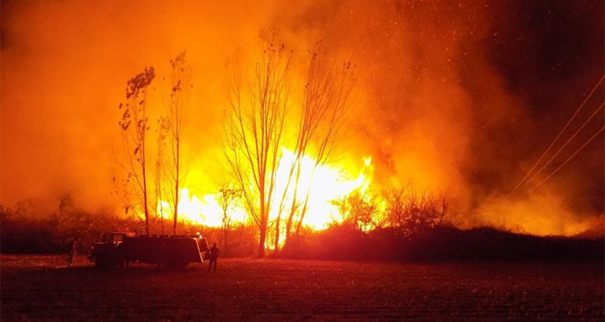 Geceyi alevler aydınlattı, Karpuzluda arazi yangını