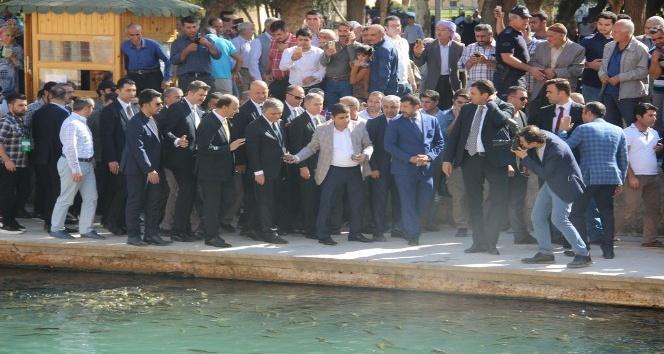 Abdullah Gül Balıklıgöl'de balıklara yem attı