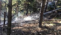 Tosya Ekincik köyü ormanlık alanda yangın