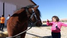 Çocukların at binme keyfi