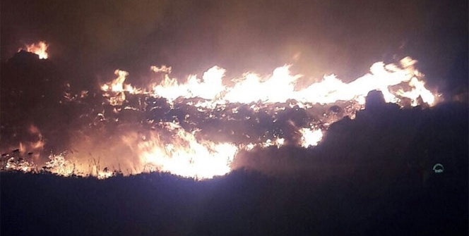 Bodrum'da 1 hektarlık alan kül oldu