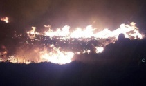 Bodrumda 1 hektarlık alan kül oldu