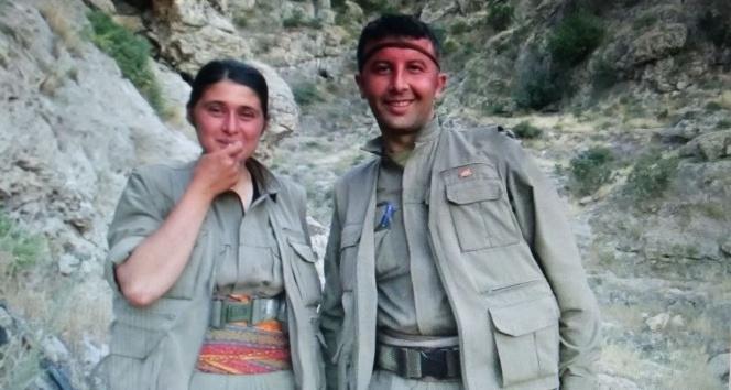 Mardinde PKKya büyük darbe