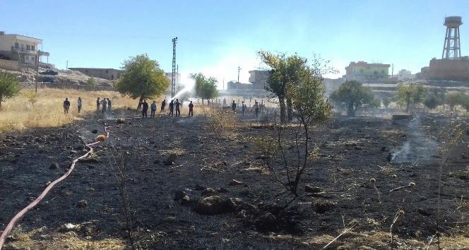 Midyatta mezarlıkta yangın