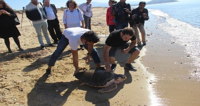 Başından vurulan Dilek denize bırakıldı