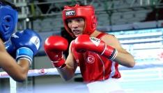 Avrupa Boks Şampiyonasında iki önemli galibiyet