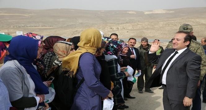 Vali Ali Hamza Pehlivan, gençlerle birlikte fidan dikti
