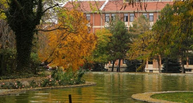 Dünyanın dört bir yanından bitkiler Anadolu Arboretumda buluştu