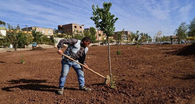Ahmed Arif Parkı tamamlanıyor