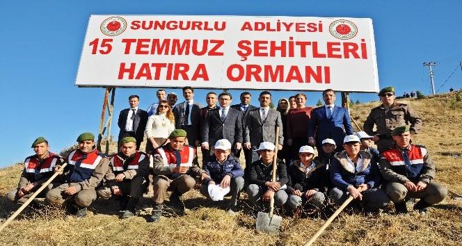 Sungurlu'da asker ve öğrenciler fidan dikti