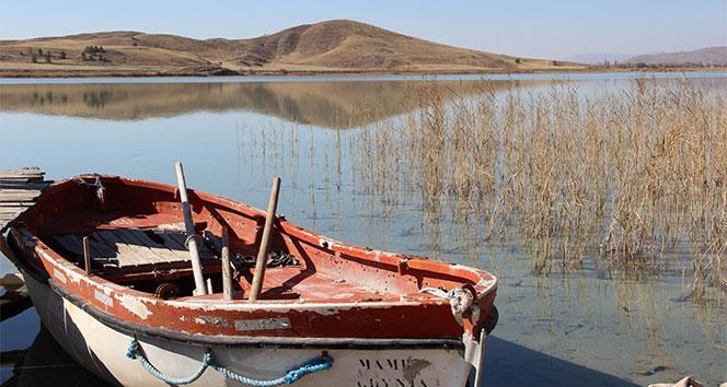 Sivasın kuş cenneti Tödürge Gölünde sonbahar
