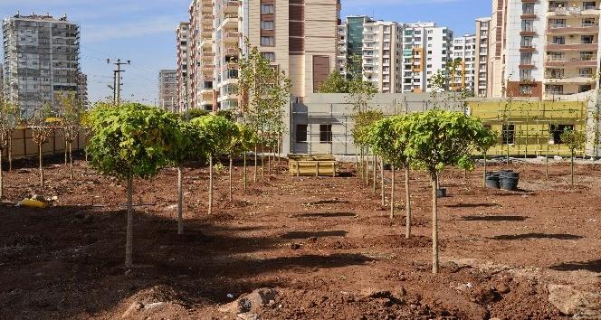 Diyarbakır'da Kent Meydanı çalışmaları sürüyor