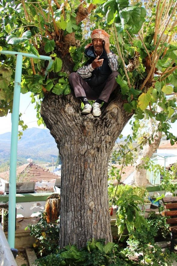 Telefonla konuşabilmek için ağaç ve çatılara çıkıyorlar