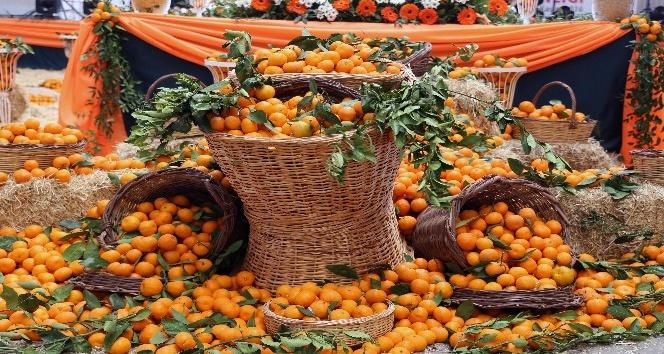 Seferihisar'da turuncu festival için artık geri sayım