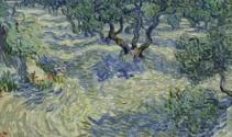 Van Gogh'un tablolarından birinde çekirge bulundu