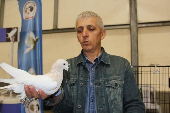 Dünyada eşi olmayan 100 bin TL'lik güvercinler fiyatıyla şaşırtıyor