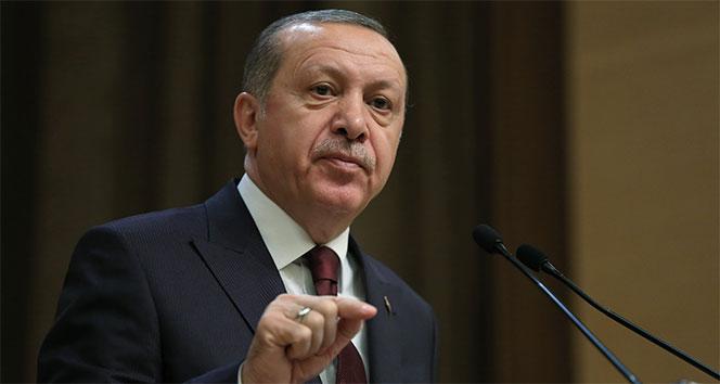 Cumhurbaşkanı Erdoğan, hükümlünün cezasını kaldırdı