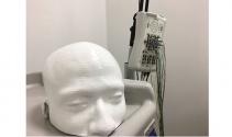 Üç boyutlu yazıcı ile insan kafatası modeli bastılar
