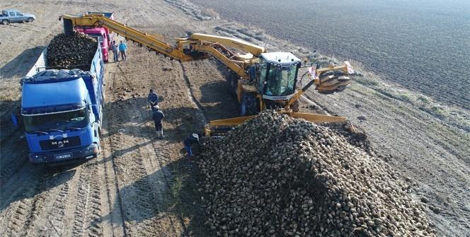Pancar üreticisinin verimli toprağı artık tarlada kalıyor