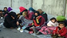 Hatayda 17 göçmen yakalandı