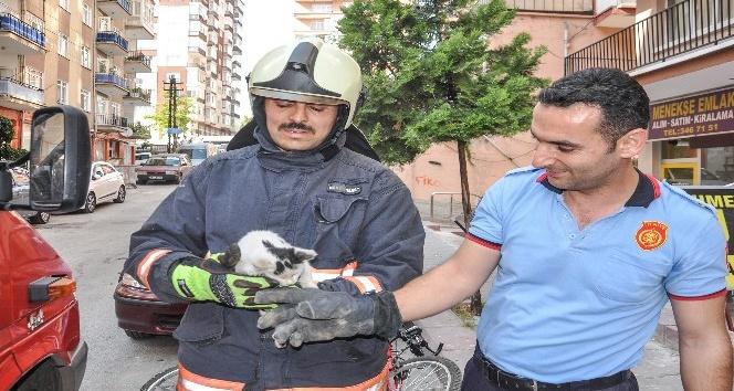 Hayvanların cankurtaranı Ankara İtfaiyesi